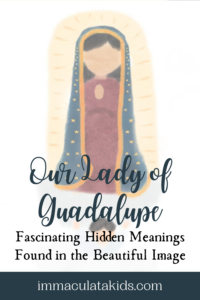 Image of Our Lady of Guadalupe Pin