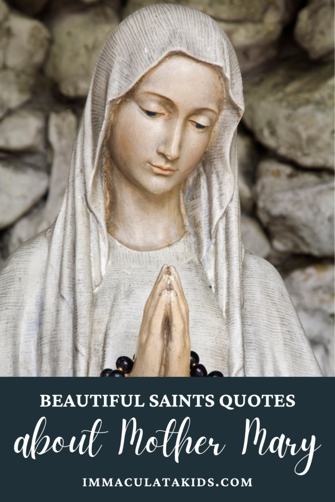 Beautiful Saints Quotes About Mary